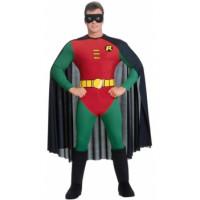 Robin, Le fidèle ami de Batman!  - déguisement adulte à louer DGZL-100054 de Non