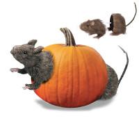 Rat en 2 Parties à Piquer 21cm 123DEG-3700638225529-10019130