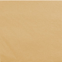 Serviettes Ouate Pastel Abricot 30 X 39cm 2 Feuilles Paquet de 100 123DEG-3504081211609-10016760
