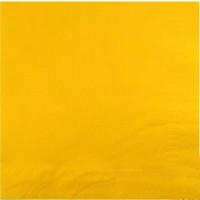 Serviettes Ouate Vives 30 X39 Citron 2 Feuilles Paquet de 100 123DEG-3504081215201-10016772